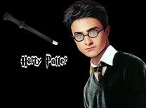 Stilul Lui Harry Potter